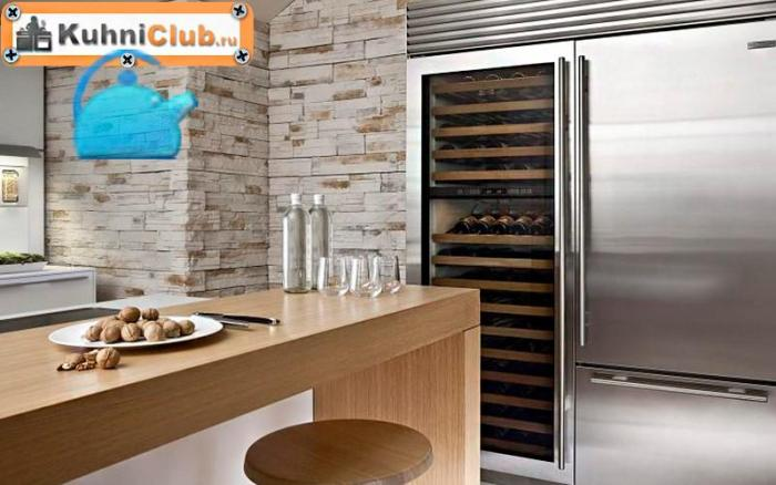 Разновидности-стеклянных-холодильников