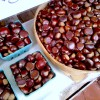 chesnuts 2