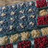 BerryAmericanFlag.fw