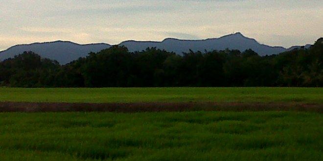 Kampung Sg Pasiaq, Sg Petani