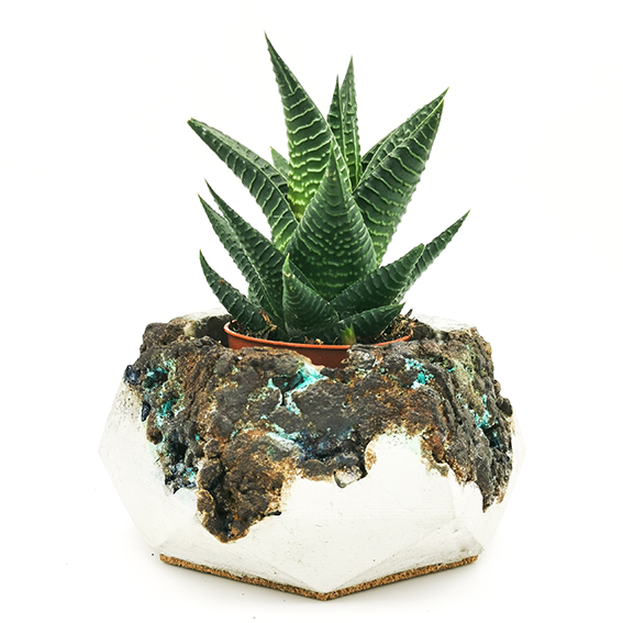Pot de fleurs Béton Patine
