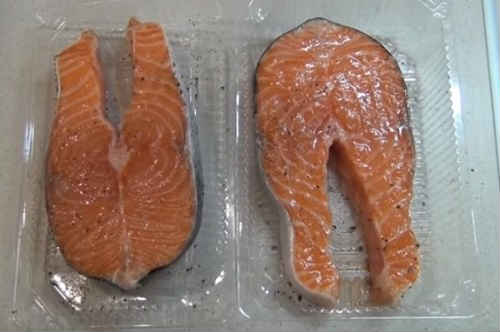 سمك السالمون