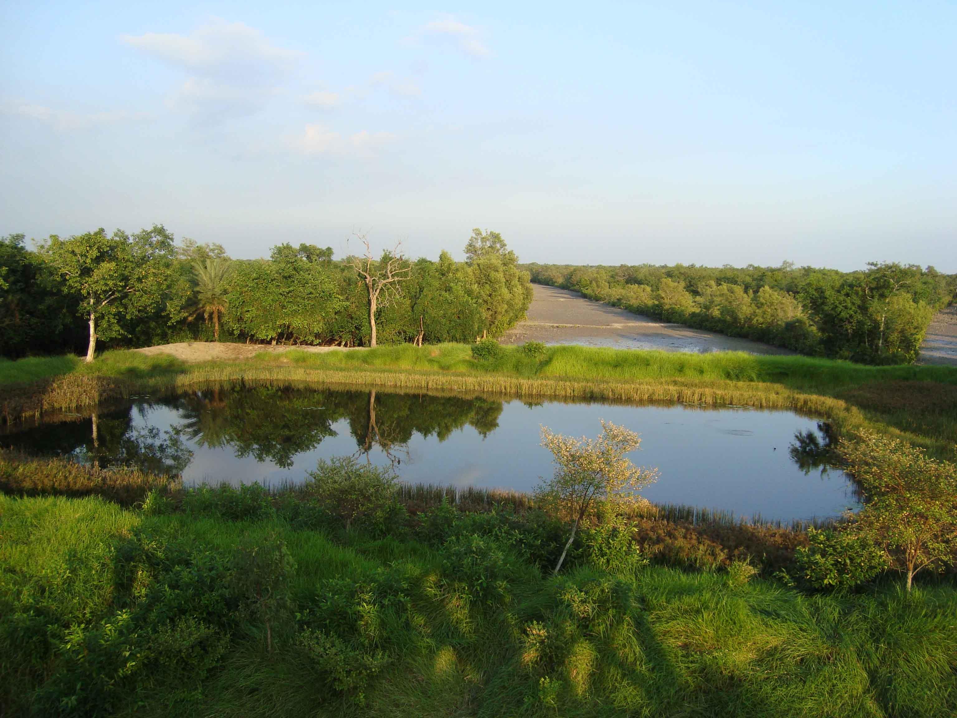 Environment And Natural Resource Management