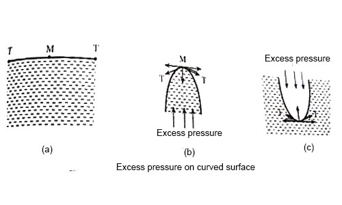 Excess Pressure on Curved Surface of a Liquid and inside