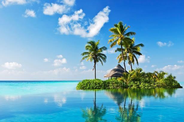 paratiisia.jpg