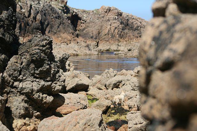 Praia Traba – wir bleiben noch ne Weile