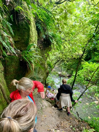 Take your family out for a walk - the NZ style :)