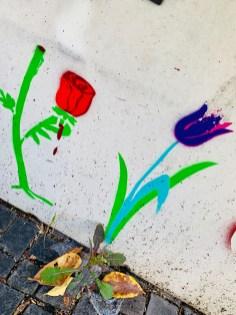 Rosen und Tulpen in der Nähe des Kurfürstenplatzes