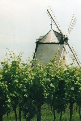 web_Windmuehle