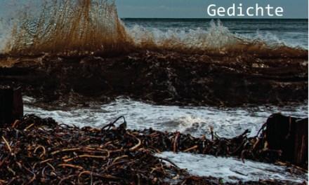 Rezension zu : Reimer Boy Eilers, Mehr Nordsee – Gedichte