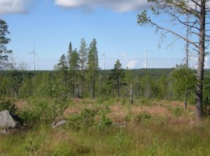 Vindkraftverk i Markbygden. Foto: Carina Bennerhag © Norrbottens museum