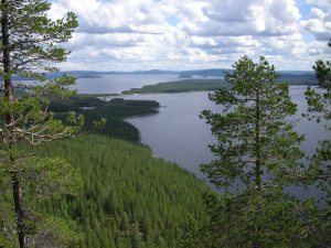 Utsikt över Randijaure-och-Parkijaure  ©Norrbottens museum. Foto Frida Palmbo.