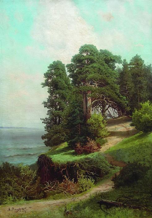 «Обрывистый берег. Сосны» (1880-е).