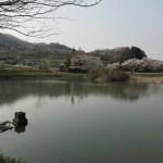 【大郷戸ダム近くならココがおすすめ/動画あり】県境周辺 人気のバス釣りスポット
