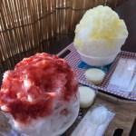 【真岡のかき氷】ヤグチフルーツのかき氷がおすすめ