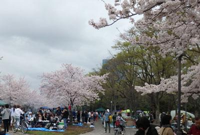 大阪城公園 バーベキュー