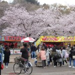 大阪城公園 屋台 花見