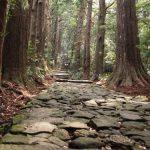 【世界遺産】熊野古道とは?初心者おすすめコースは大門坂から那智の滝!