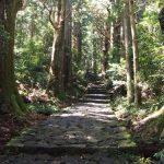 熊野で遊ぼう!熊野古道ウォークツアー