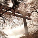 【熊野古道・中辺路コース】距離・マップ・宿泊・バス時刻表