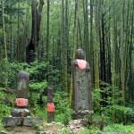 どこの熊野古道がいい?迷っているなら…ホテルに泊まってツアーに参加がおすすめ!