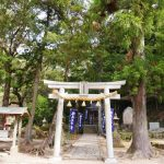 「超体感 熊野古道 神秘の旅」NHKの再放送決定?!3月25日 3月27日