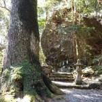 【関西パワースポット】穴場の最強神社7選!癒し!浄化!蘇りの聖地!