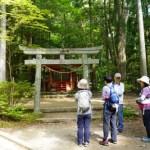 【発心門王子のアクセスと歩き方】熊野本宮大社からバスで?送迎付きの宿がおすすめ