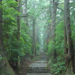 聖地熊野を訪れて人生が変わった?