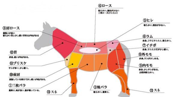 熊本馬刺し03