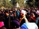 Maghi Festival in Thakurdwara, Bardia
