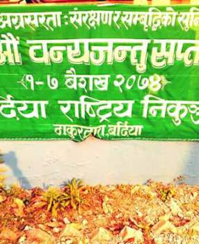 Wildlife Week Celebration in Bardia National Park