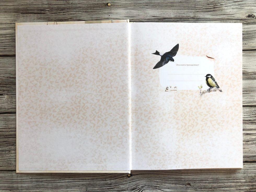Очень красивая и полезная книга о птицах для детей - Птицы в городе 2