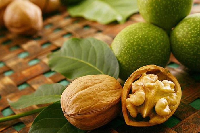 Грецкий орех – пища богов