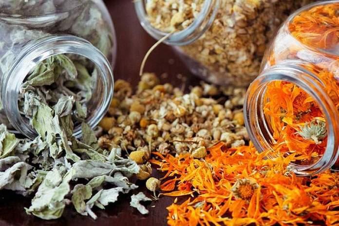 Храним лекарственные травы