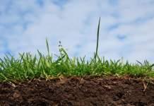 Как легко и быстро создать плодородный слой почвы