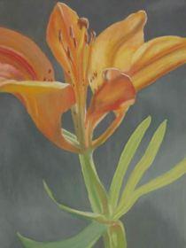 reference artist Dianne Bertold