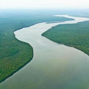 Netravathi river