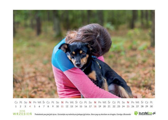 FIFI 698 307 526 wróciła z adopcji!