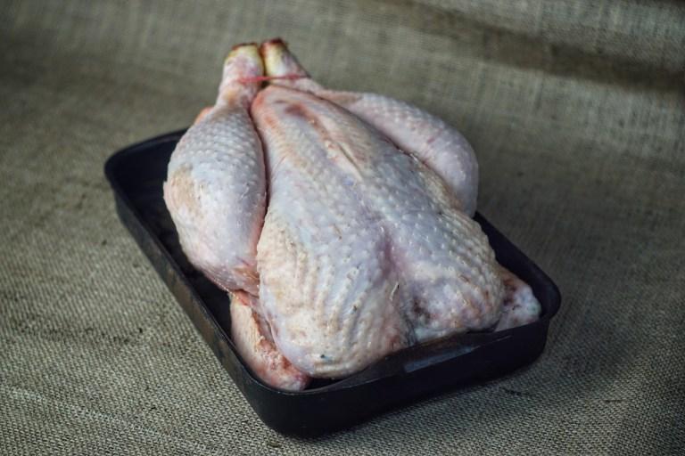 100 day chicken