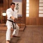 Practicing in the dojo