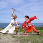 Boudiccu and White Arrow