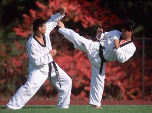 TKD kicks require lots of devoted training