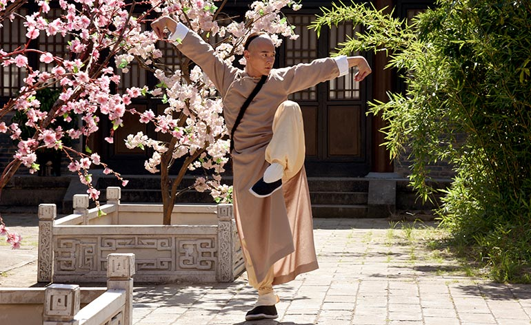 Master of the Shadowless Kick: Wong Kei-Ying (2017) - Kung Fu Kingdom