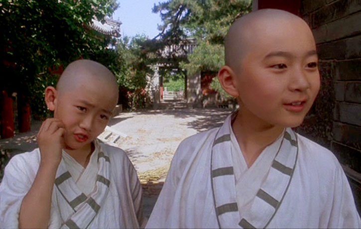 The two friends learn kung fu to fight off bullies
