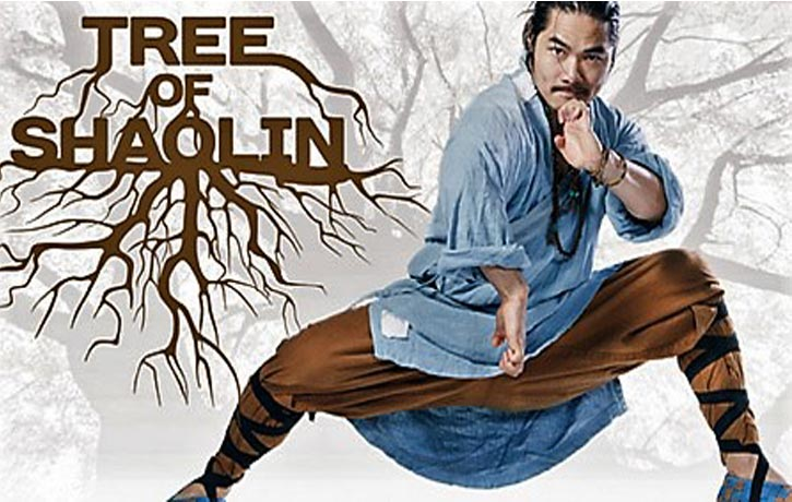 Join Shifu Wang Bo on the Tree of Shaolin journey