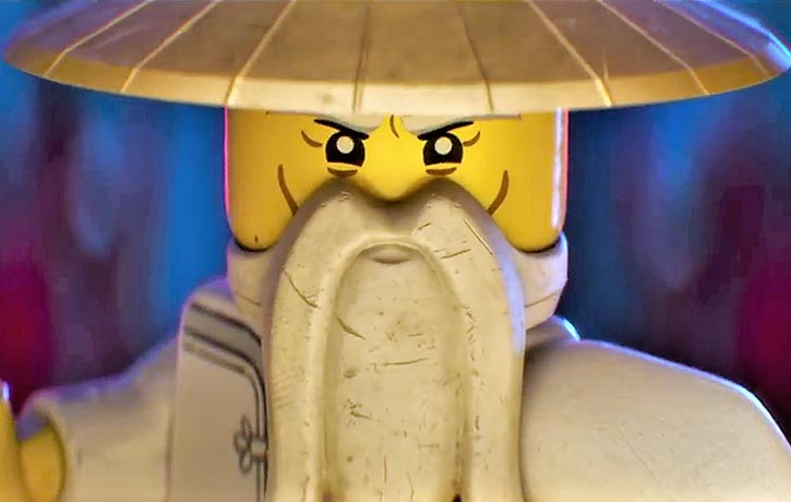 Master Wu is the wise leader of Ninjago's Ninja Force