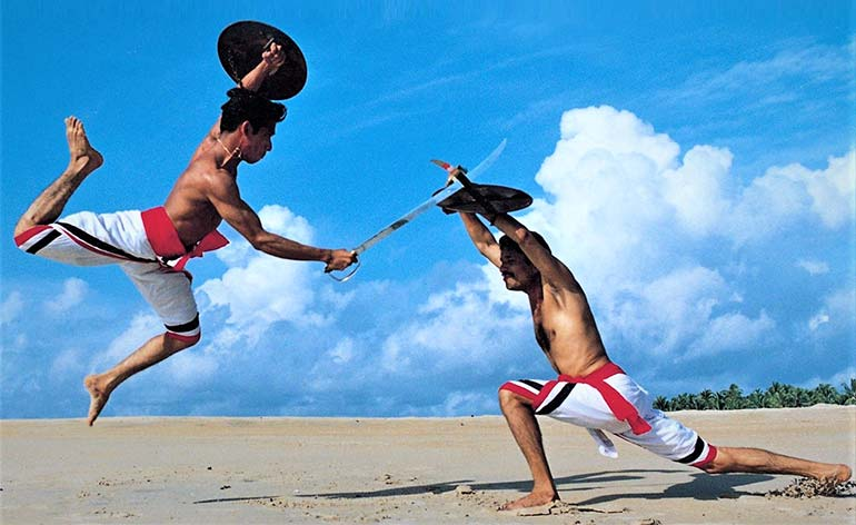 Martial Art of the Month: Kalaripayattu - Kung-Fu Kingdom