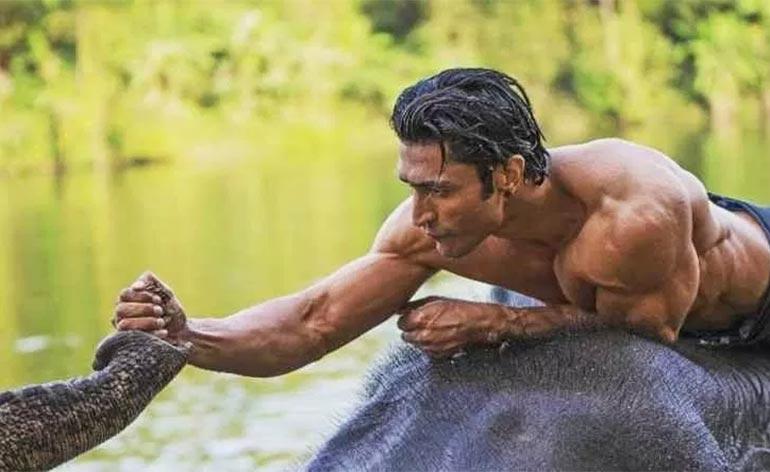 Junglee: Bollywood Actioner Coming Soon!