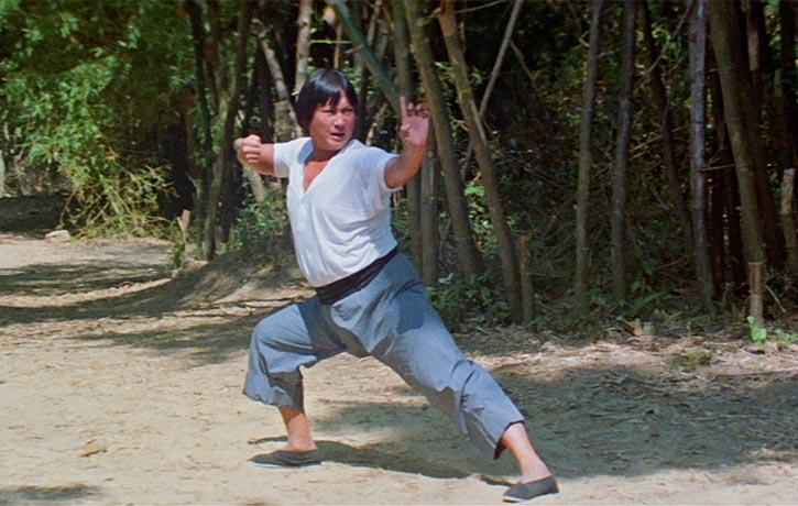 Sammo Hung stars as Lam Sai Wing